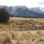 New Zealand Amanda Edwards 3